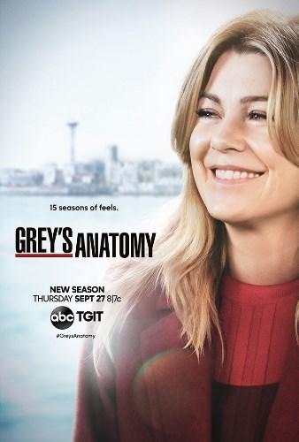 Greys Anatomy 15x08 Un Soffio Nel Vento iTA AC3 WEBMux x264 ADE CreW