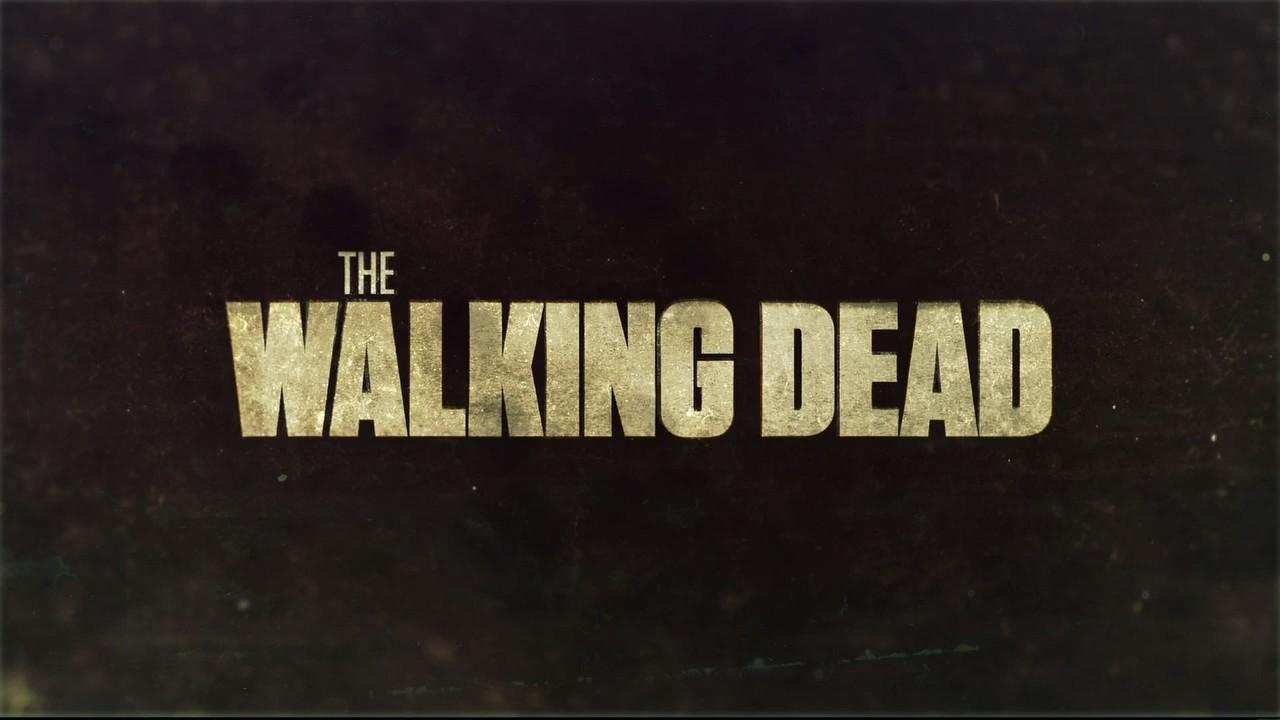The.Walking.Dead.9x14.Cicatrici.ITA.DLMux.x264-UBi.mkv